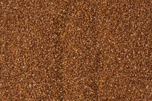 Photo closeup of brown teff grain from above