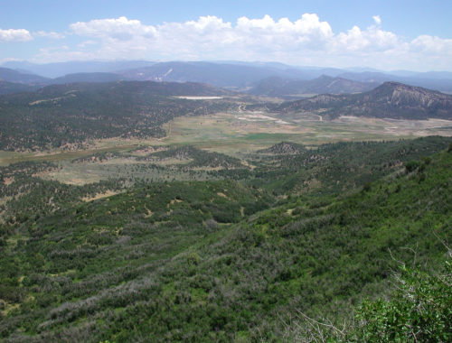 Aerial photo of mountain forest and fields