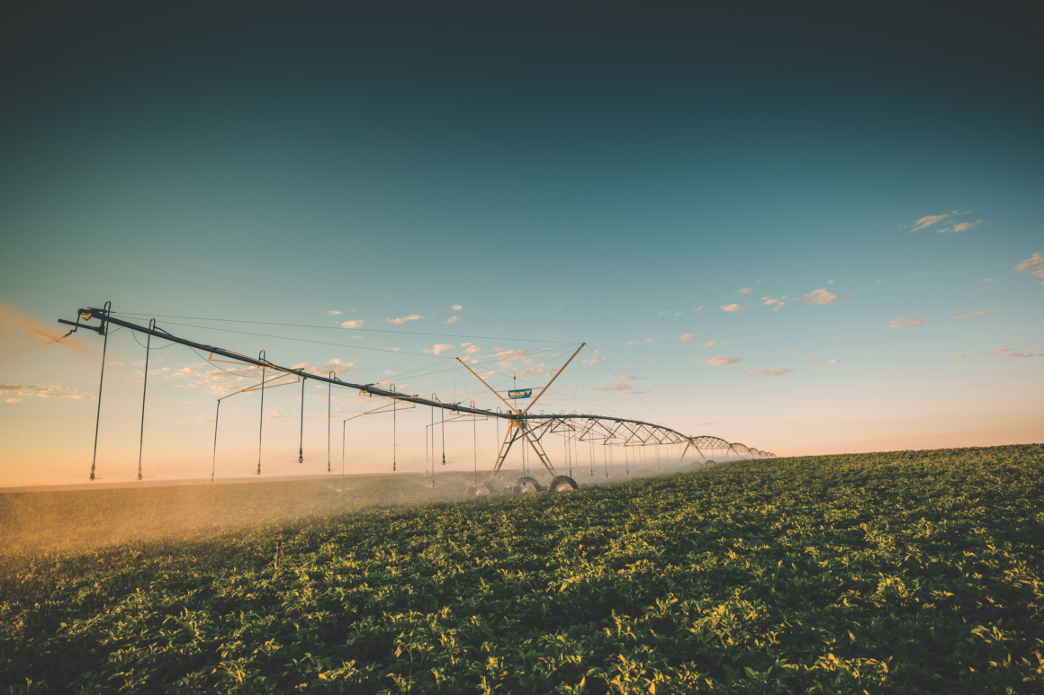 Photo of a pivot watering crops in a field