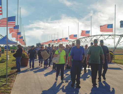 Photo of a crowd of people walking along a road lined with American flags