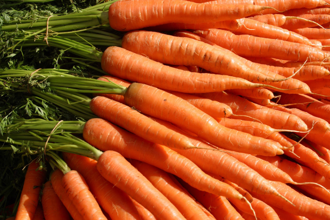 Photo closeup of a bundle of carrots